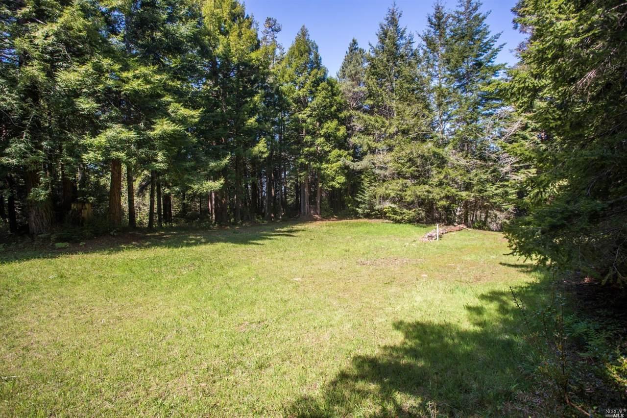 44825 Jack Peter Creek Road - Photo 1