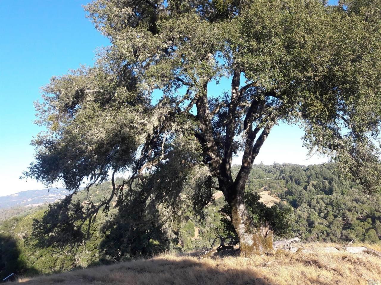 0 Mountain House Road - Photo 1