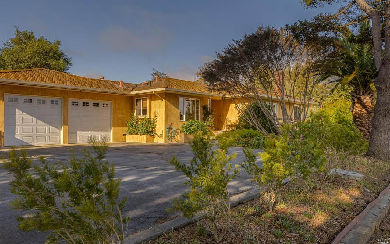 4381 Bodega Avenue - Photo 1