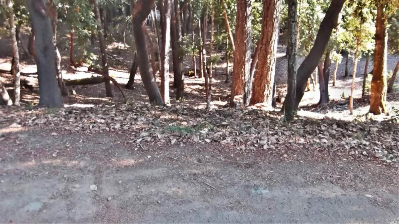 26931 Bear Drive - Photo 1