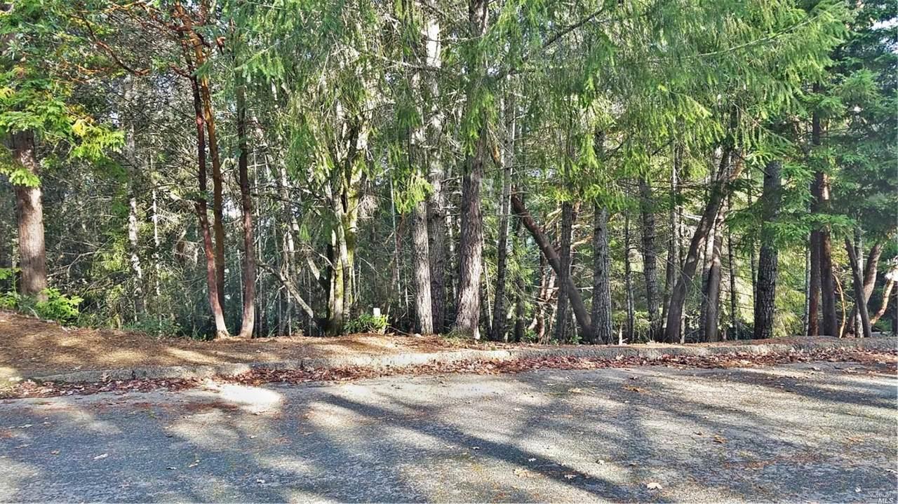 24153 Willow Ln Drive - Photo 1