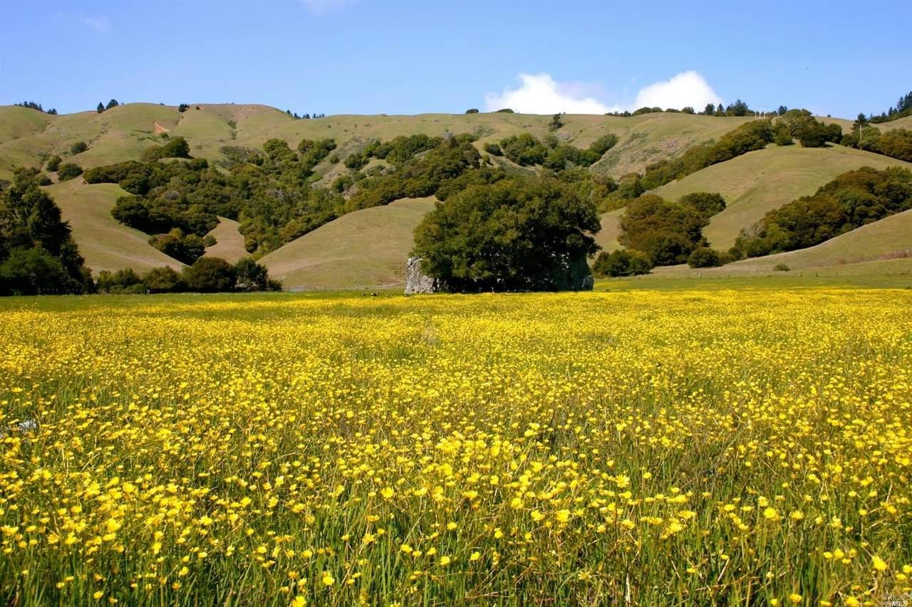 9 Meadow View Lane - Photo 1