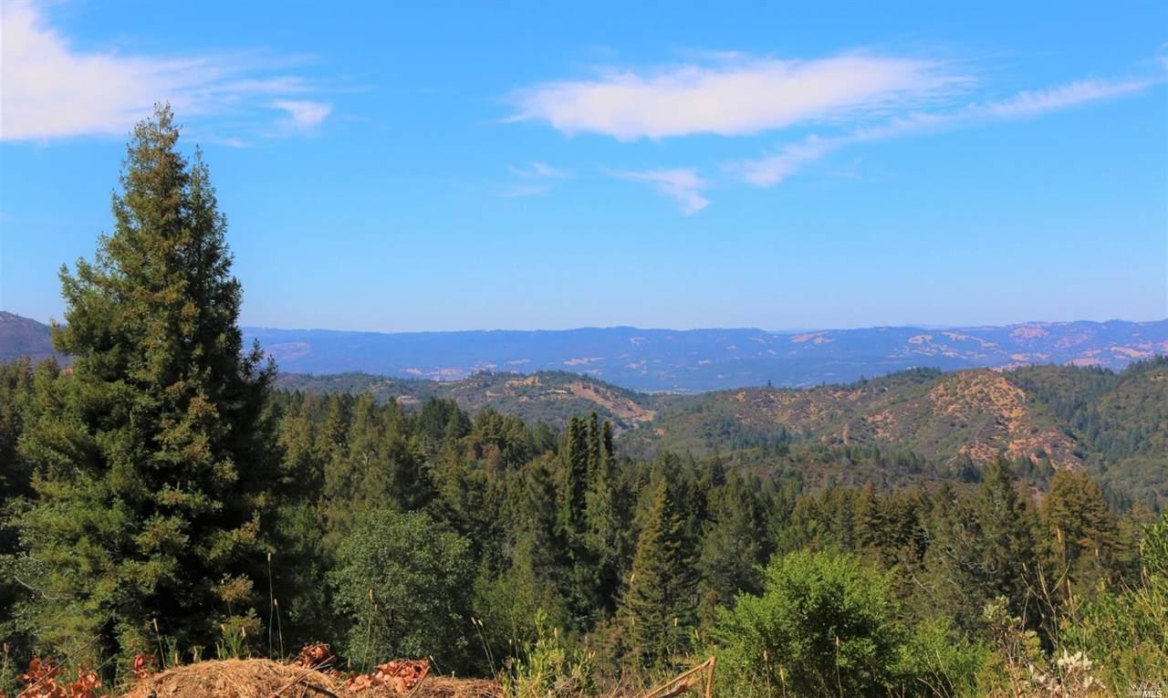 3363 Mount Veeder Road - Photo 1