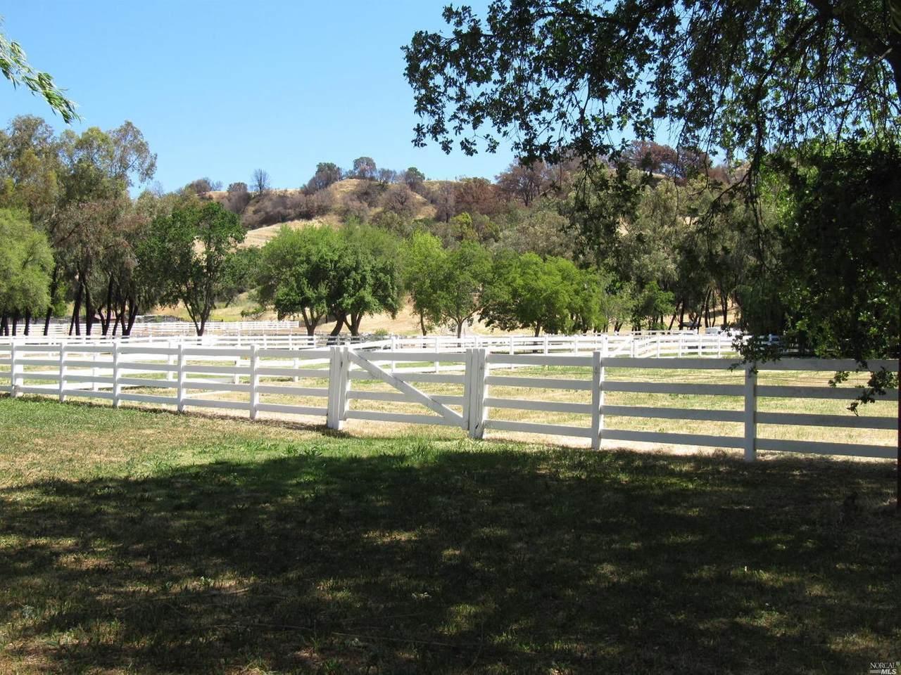 3500 Pleasants Trail Road - Photo 1