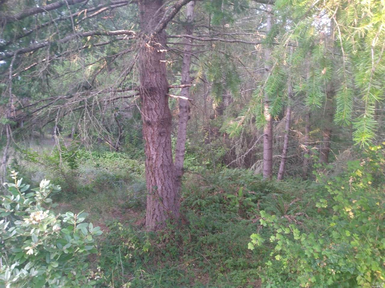 743 Redwood Road - Photo 1