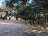 4129 Dry Creek Road - Photo 38