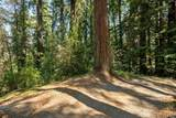 98 Conifer Way - Photo 1
