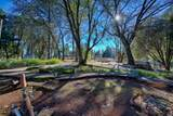 896 Ponderosa Drive - Photo 83