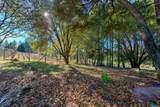 896 Ponderosa Drive - Photo 85