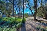 896 Ponderosa Drive - Photo 88