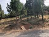 10333 Del Monte Way - Photo 4