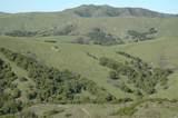 200 Tomasini Canyon Road - Photo 44