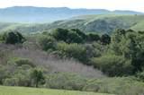 200 Tomasini Canyon Road - Photo 53