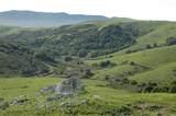 200 Tomasini Canyon Road - Photo 65