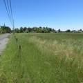 1605 Watmaugh Road - Photo 5