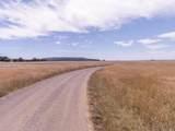 33501 Navarro Ridge Road - Photo 7