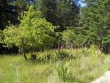 42480 Roseman Creek Road - Photo 1