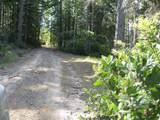 42480 Roseman Creek Road - Photo 3