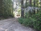 42480 Roseman Creek Road - Photo 9