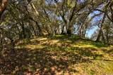 279 Clear Ridge Drive - Photo 10