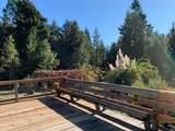 43155 Brushy Ridge Loop - Photo 42