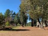 43155 Brushy Ridge Loop - Photo 43
