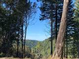 43155 Brushy Ridge Loop - Photo 47