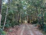 43155 Brushy Ridge Loop - Photo 48