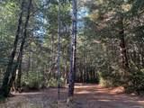 43155 Brushy Ridge Loop - Photo 49