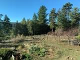 43155 Brushy Ridge Loop - Photo 50