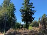 43155 Brushy Ridge Loop - Photo 51
