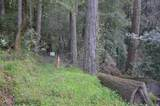 37 Conifer Way - Photo 26