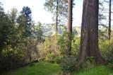 37 Conifer Way - Photo 3