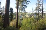 37 Conifer Way - Photo 8
