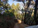 1501 Lucas Valley Road - Photo 41