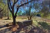 896 Ponderosa Drive - Photo 89