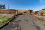 12135 Highway 128 Highway - Photo 3