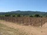 0 Silverado Trail - Photo 8