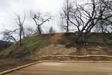 7200 Cougar Lane - Photo 25
