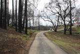 7200 Cougar Lane - Photo 3