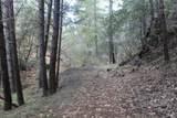 26355 Rifle Range Road - Photo 19