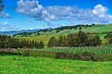 136 Kirkland Ranch Road - Photo 17