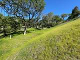 5271 Vista Grande Drive - Photo 13
