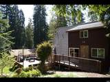 46151 Pacific Woods Road - Photo 3