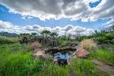 900 Quietwater Ridge - Photo 11