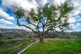 900 Quietwater Ridge - Photo 5