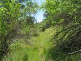 486 Oak Knoll Road - Photo 13