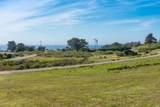 43610 Sea Cypress Drive - Photo 3