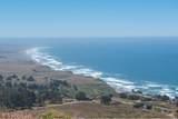 43610 Sea Cypress Drive - Photo 6