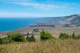 43610 Sea Cypress Drive - Photo 7